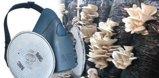3M Polen ve Spor Maskesi | Mantarhane Maskesi 3MMushroom PX100