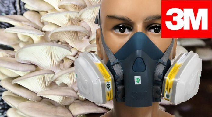 3M Polen Maskesi ve Filtresi Satıyoruz | Mantar Sporu